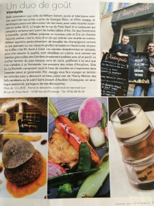 Article terre de Provence